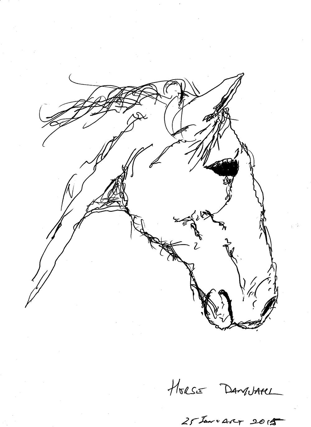 Dan Wahl - Hinterland Art Crawl - horse drawing