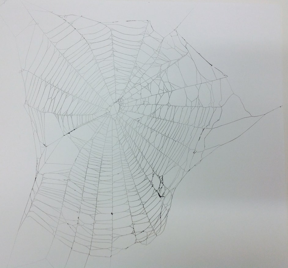 Spiderweb #1 - paper, spray paint, and spiderweb - a mixed media piece by Jesse White