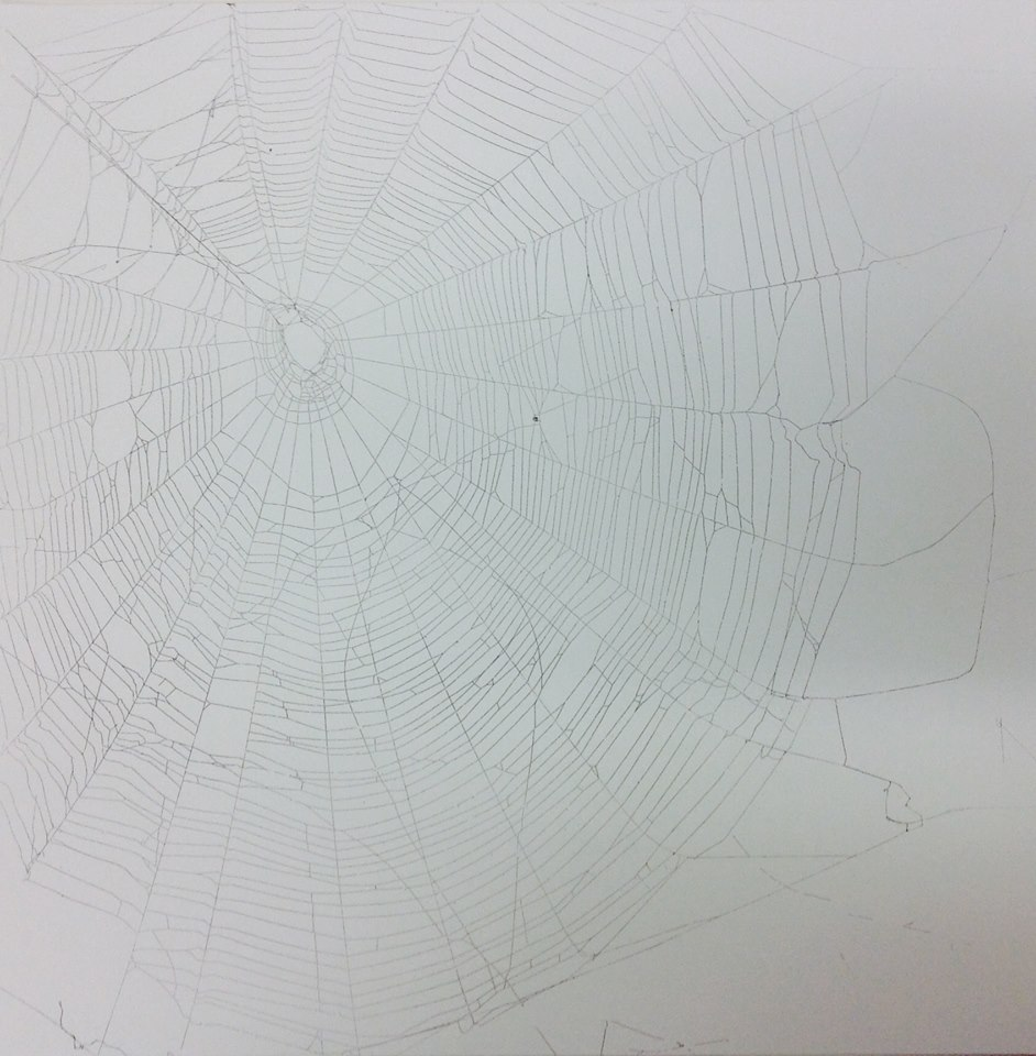 Spiderweb #2 - paper, spray paint, and spiderweb - a mixed media piece by Jesse White
